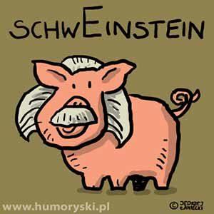 schweinstein_HUM_20140824
